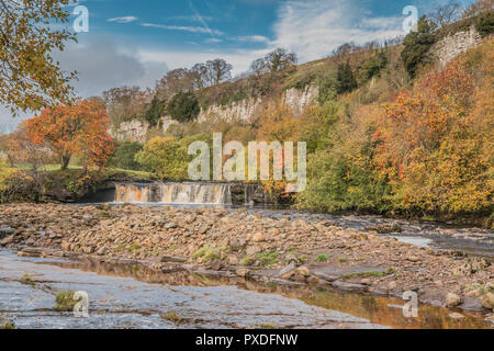 Yorkshire Dales National Park autumn landscape, vivid autumn colours at Wain Wath Falls, Swaledale, UK - Stock Photo