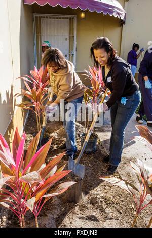 Florida FL South Miami Liberty City Square public housing neighborhood Hands On HandsOn Miami volunteer volunteers community service voluntee