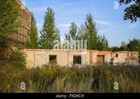 Abandoned ruined building is slowly disappearing amongst overgrown vegetation - Stock Photo