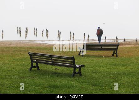 22 October 2018, Mecklenburg-Western Pomerania, Goldberg: A man stands on the shore of Lake Goldberg in gloomy weather. Photo: Danny Gohlke/dpa-Zentralbild/dpa - Stock Photo