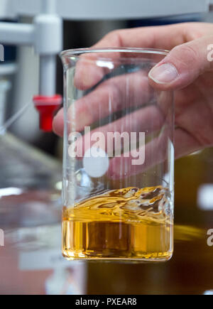 Bitterfeld Wolfen, Germany. 22nd Oct, 2018. In the laboratory of the chemical company Nouryon in the chemical park in Bitterfeld-Wolfen, a laboratory assistant determines the lye carbonate content in brine. The former AkzoNobel Specialty Chemicals now operates as an independent company under the name Nouryon. The division was taken over by the US Carlyle Group. In Bitterfeld, the company operates a chlor-alkali electrolysis plant. Credit: Hendrik Schmidt/dpa-Zentralbild/dpa - ACHTUNG: Nur zur redaktionellen Verwendung im Zusammenhang mit der Berichterstattung über Nouryon/dpa/Alamy Live News - Stock Photo