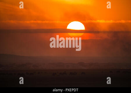 Sunrise over the Serengeti, Tanzania - Stock Photo