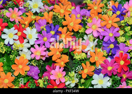 Beautiful colorful flowers background. - Stock Photo