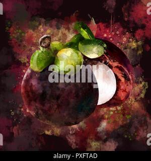 Mangosteen on dark background. Watercolor illustration - Stock Photo
