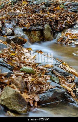 A little cascade in the Carpathian Mountains in fall season - slow motion - Stock Photo