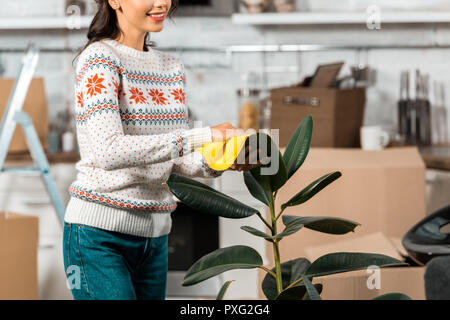 partial view of young woman wiping dust from potted plant by rag in kitchen with cardboard boxes at new home - Stock Photo