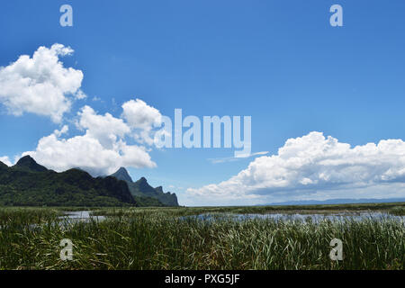Cumulonimbus with Cumulus cloud formations on tropical sky, Limestone mountain on wetland filled with green plant, Khao Sam Roi Yot National Park - Stock Photo