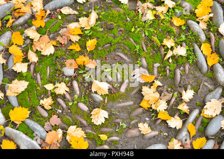 Huge large stones and pebbles as decorative circled bent path or flower bed with yellow fallen autumn leaves and red berries on the ground - Stock Photo