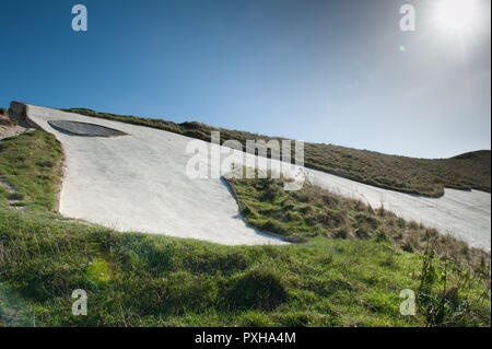 Close up views at the head of White Horse, Westbury, Wiltshire, UK. - Stock Photo