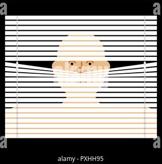 Pry through jalousie. watching through blinds. Spying vector illustration - Stock Photo