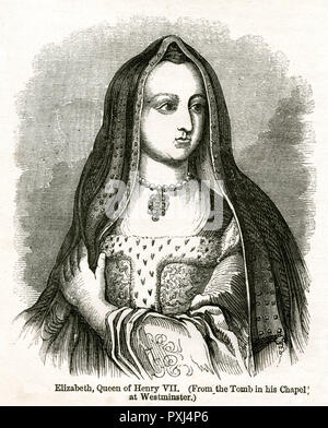 Elizabeth of York (1466 - 1503),wife of Henry VII and the first Tudor queen. She was the daughter of Edward IV and niece of Richard III - Stock Photo