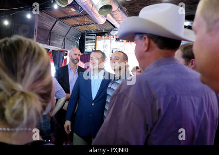 12 October 2018, US, Houston: The republican senator and former presidential candidate Ted Cruz (3rd from left) during an election campaign event. Cruz will be competing against Democrat Beto O'Rourke, one of the Democrats' hopes, in the congressional elections. (to dpa 'How the Democrat Beto O'Rourke wants to conquer Texas' from 23.10.2018) Photo: Maren Hennemuth/dpa - Stock Photo