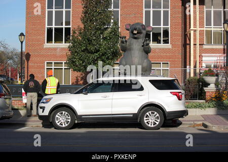 Oversized fat Blow up rat, rodentia, used as a prop for labor strikes and an iconic symbol for striking workers. - Stock Photo