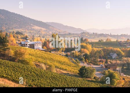 View of vineyards and wineries on the Naramata Bench at sunset in autumn