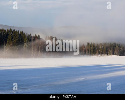 Frost smoke at the edge of the forest by Sognsvann lake in Oslo Norway on a cold winters day - Stock Photo