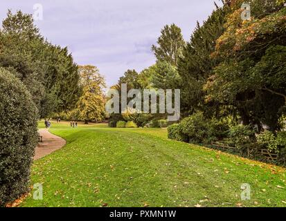 Early autumn in Museum Gardens in York. Leaves litter the ground as people walk through the gardens.  Trees surround the scene. - Stock Photo