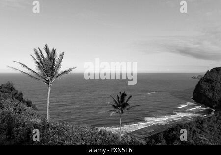 Coastline, Pololu Valley Lookout, Big Island, Hawaii, United States of America USA