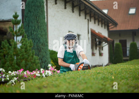 Professional older gardener in uniform cutting bushes with clippers and looking at camera. Worker, wearing in uniform with safety mask and protective headphones landscaping bushes in backyard. - Stock Photo