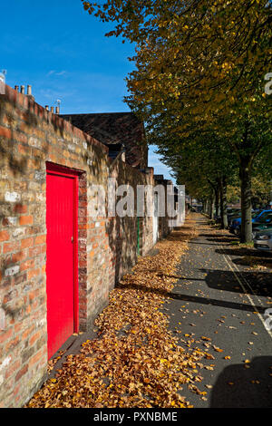 Fallen autumn leaves on a path behind terraced houses York North Yorkshire England UK United Kingdom GB Great Britain - Stock Photo