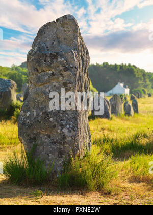 France, Brittany, Morbihan, Carnac, megalithic menhir alignments of Menec - Stock Photo