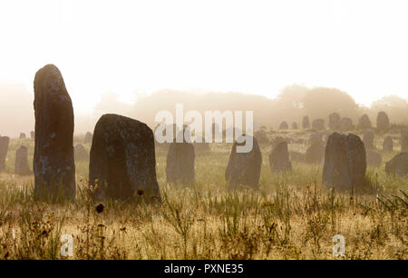 France, Brittany, Morbihan, Carnac, megalithic menhir alignments of Menec in fog - Stock Photo