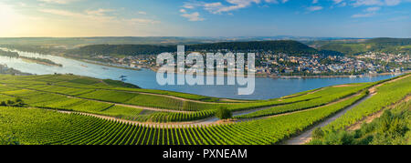 View of Bingen, vineyards and River Rhine, Rudesheim, Rhineland-Palatinate, Germany - Stock Photo