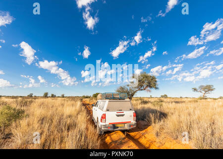 Africa, Botswana, Kgalagadi Transfrontier Park, Mabuasehube Game Reserve, off-road vehicle on sand track - Stock Photo