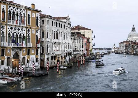 Palazzo Cavalli Franchetti und Barbaro-Curtis am Canale Grande in Venedig, Italien - Stock Photo