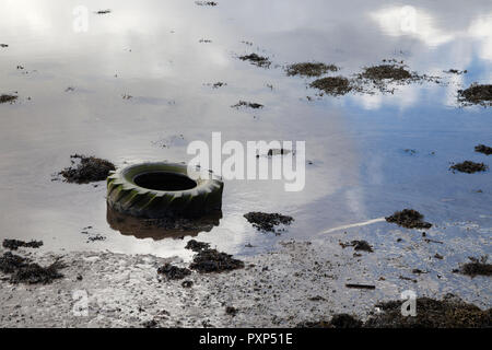 Tractor tyre washed up on the shore. Pollution in the sea.bay - Stock Photo