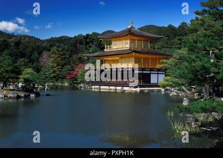 Kinkaku-ji, Temple of the Golden Pavilion, on a pond surrounded by autumn scenery of a Japanese garden. Officially known as Rokuon-ji, Zen Buddhist te - Stock Photo