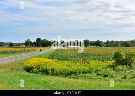 Rural landscape of flat farmland in the Finger Lakes region of  New York state, USA - Stock Photo