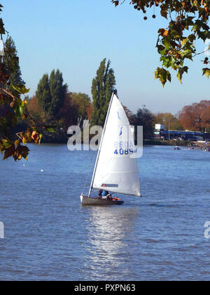 Sailing yacht on the River Thames at Putney on a sunny Sunday in October - Stock Photo
