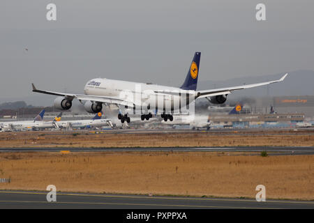 D-AIHD, Airbus A340-642 der Lufthansa am Flughafen Frankfurt am Main (FRA), 23.09.2018 - Stock Photo