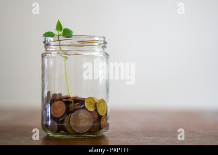 Plant Growing In Savings Coins - Stock Photo
