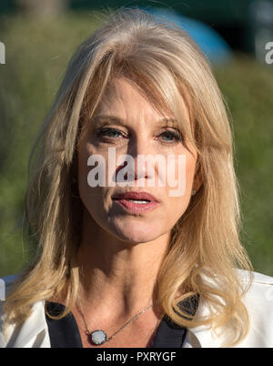 Washington, United States Of America. 24th Oct, 2018. White House Senior Counselor Kellyanne Conway meets reporters on the driveway of the White House in Washington, DC on Wednesday, October 24, 2018. Credit: Ron Sachs/CNP | usage worldwide Credit: dpa/Alamy Live News - Stock Photo