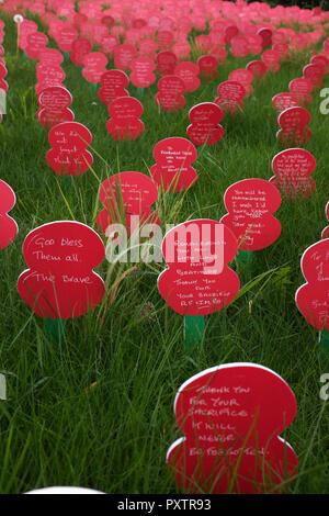 Poppy display at Tyne Cot CWGC, Flanders, Belgium - Stock Photo