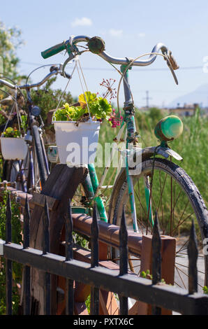 Old-fashioned retro bikes with flowerpots decorating the green garden in Heraklion (Greece) - Stock Photo