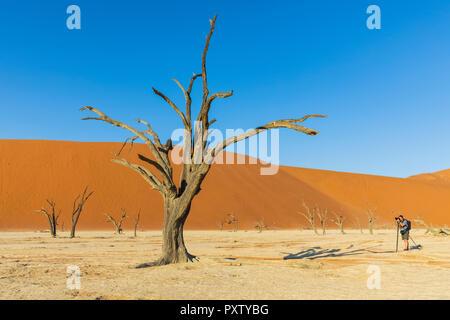 Africa, Namibia, Namib desert, Naukluft National Park, - Stock Photo
