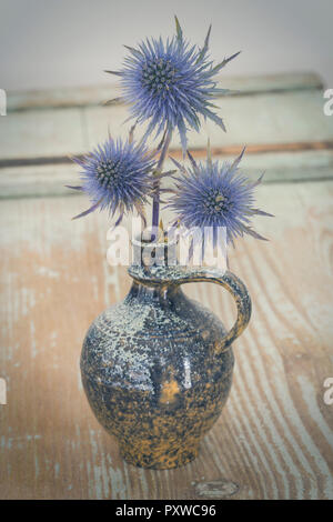Blue Thistle in a vase - Stock Photo