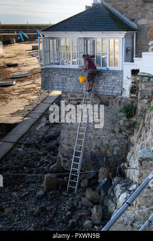 Sole window cleaner at the top of a high ladder at low tide in order to clean the external window panes of windows overhanging the harbour, Mousehole. - Stock Photo