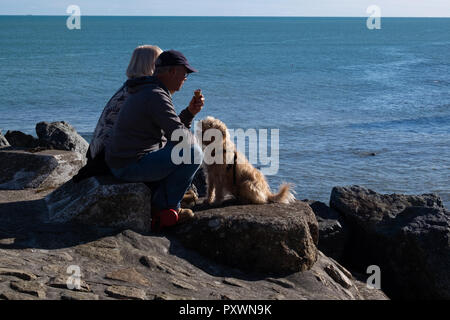 Older couple sitting on the rocks overlooking the sea eating an ice-cream cone with their hopeful looking terrier type dog looking on in hope. - Stock Photo