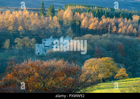 Autumn view of Barden Tower, historic ancient ruins by dense woodland trees with colourful foliage - Bolton Abbey Estate, Yorkshire Dales, England, UK - Stock Photo