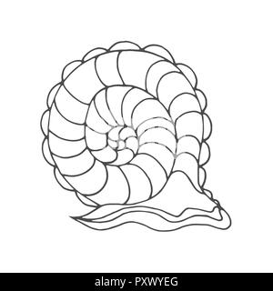 Snail Coloring Page For Children And Adults Pattern Isolated