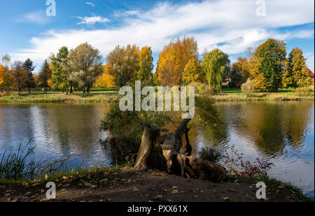 Early autumn at the fallen tree over the river with reflections of surrounding trees with colorful foliage. Changing seasons concept - Stock Photo