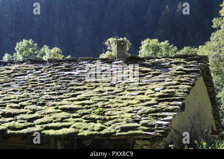 A typical rural lodge roof made with moss and lichens covered tiles during a sunny summer in the Piedmont Alps mountains, Italy - Stock Photo