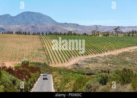 The Waterkloof Wine Estate in Somerset West, Western Cape, South Africa. A view of the Hottenttot Mountains. - Stock Photo