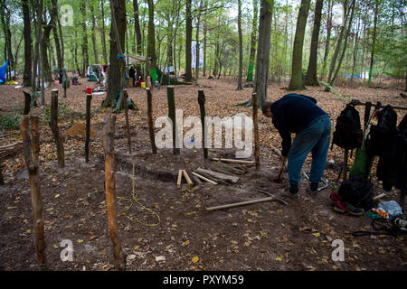 Kerpen, Germany. 24th Oct, 2018. 24 October 2018, Germany, Kerpen: An activist builds a hut in the Hambach forest. Credit: Christophe Gateau/dpa/Alamy Live News - Stock Photo