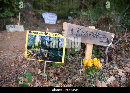 Kerpen, Germany. 24th Oct, 2018. 24 October 2018, Germany, Kerpen: In the Hambach forest there are signs in the ground saying 'Hambi we love you' and 'crow's nest'. Credit: Christophe Gateau/dpa/Alamy Live News - Stock Photo