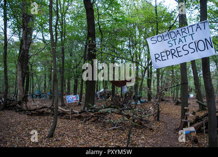 Kerpen, Germany. 24th Oct, 2018. 24 October 2018, Germany, Kerpen: A banner with the inscription 'Solidarity instead of repression' hangs in the Hambach forest. Credit: Christophe Gateau/dpa/Alamy Live News - Stock Photo