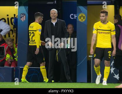Dortmund, Germany. 24th Oct, 2018. Soccer: Champions League, Borussia Dortmund - Atlético Madrid, Group stage, Group A, Matchday 3: Dortmund coach Lucien Favre. Credit: Bernd Thissen/dpa/Alamy Live News - Stock Photo